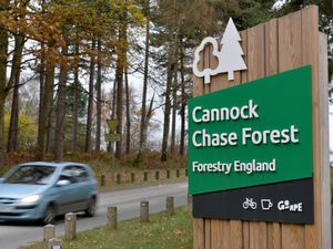 CANNOCK  COPYRIGHT TIM STURGESS EXPRESS AND STAR...... 18/11/2020. CA: GVs of Cannock Chase and  car parks and lay-bys as we do loads of stories about the plans to overhaul parking on the Chase which is controversial etc. Pictured, Birches Valley....