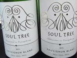 West Midlands wine company puts Indian vineyards on the map