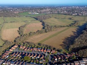An aerial image of the Seven Cornfields site.