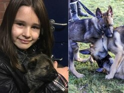 WATCH - When Robyn met Robyn: Police pup named after brave schoolgirl who chased away burglar
