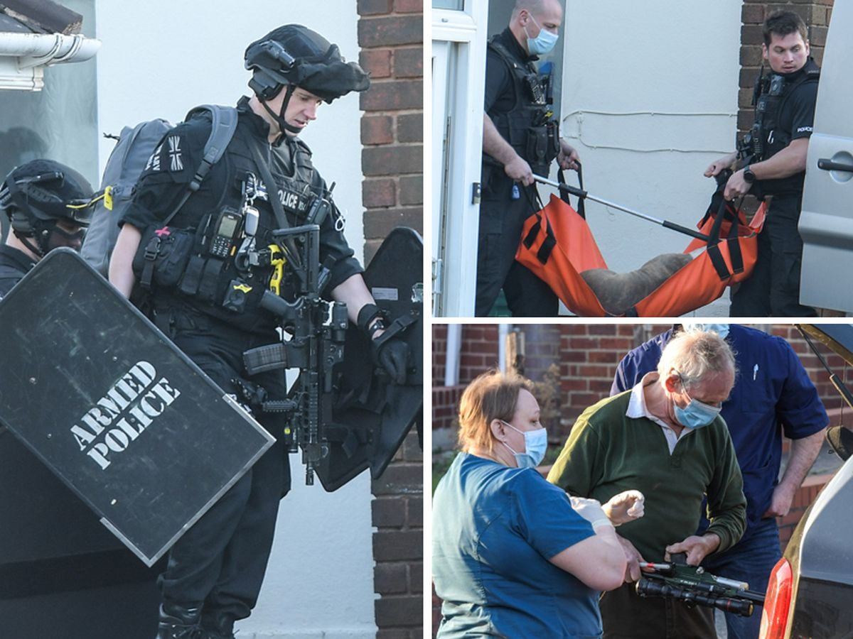 Armed police and a vet with a tranquiliser gun were sent to the scene where two dogs were taken away. Photos: SnapperSK