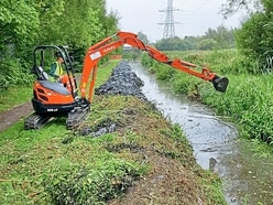 See how one canal is being transformed as dozens of weeds are dug up
