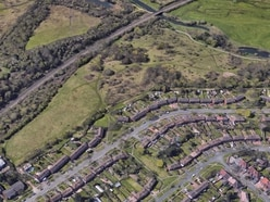 Woods and parkland near homes protected from development