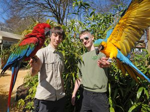 Bird keeper Tom Hughes, holding 'Aero',with zoo keeper Brandon Ashman and 'Pippa'
