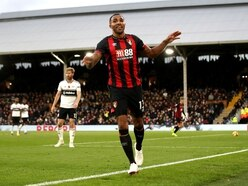 Wolves v Bournemouth: The low-down on the Cherries