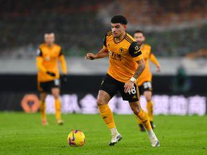 Morgan Gibbs-White of Wolverhampton Wanderers (AMA)