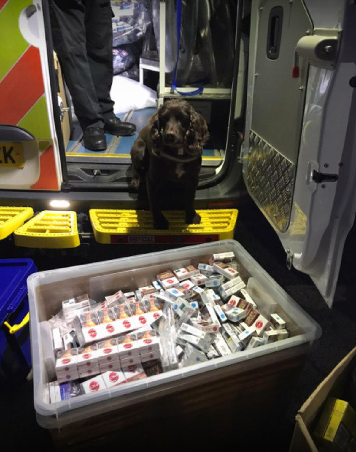 Sniffer dogs with the haul