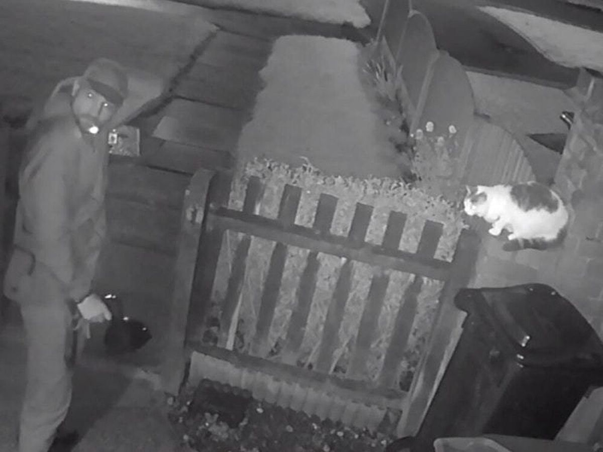 CCTV captured the horrific attack