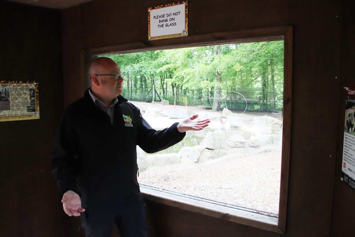 Zoo director Derek Grove with the graffiti tags to one of the enclosures