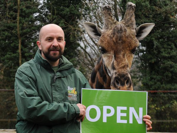Dudley Zoo curator Richard Brown and Kubwa the giraffe