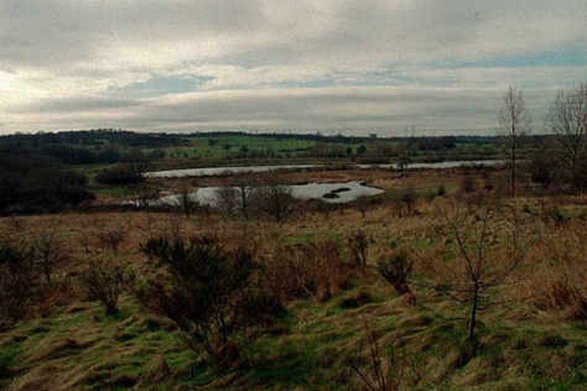 High hopes for £250k rope adventure park
