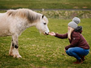 LAST COPYRIGHT SHROPSHIRE STAR JAMIE RICKETTS 01/04/2021 - Carolle Lee-Jones from Bridgnorth is putting a plea out to stop passers-by from feeding horses. Recently, due to an overload of food from the public, one of her ponies had to be put down. Pictured here with Solo, who has last a mate..