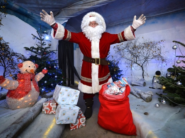 Christmas returns to Sandwell Valley