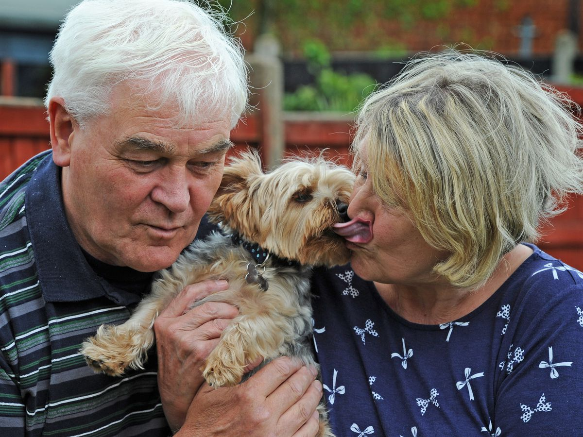 Sheila and Terry Messenger are reunited with Oscar