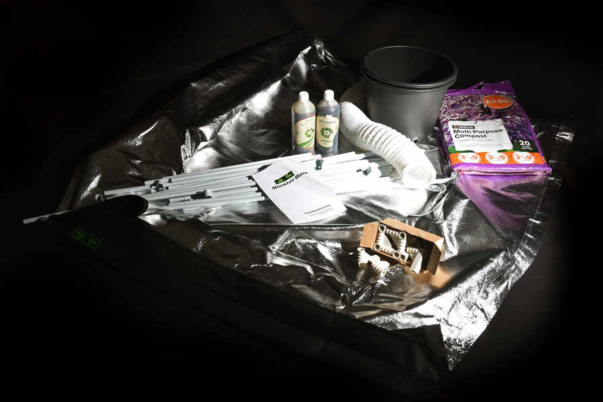 Growing gear: The paraphernalia required to grow cannabis