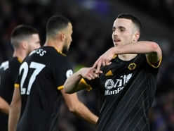 Brighton 2 Wolves 2 - Report and pictures