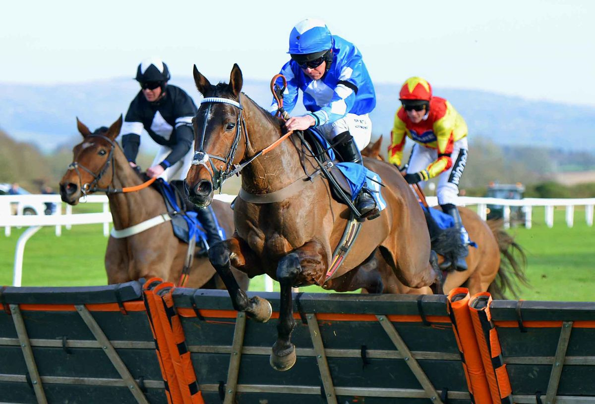 Liam Treadwell at Ludlow Racecourse
