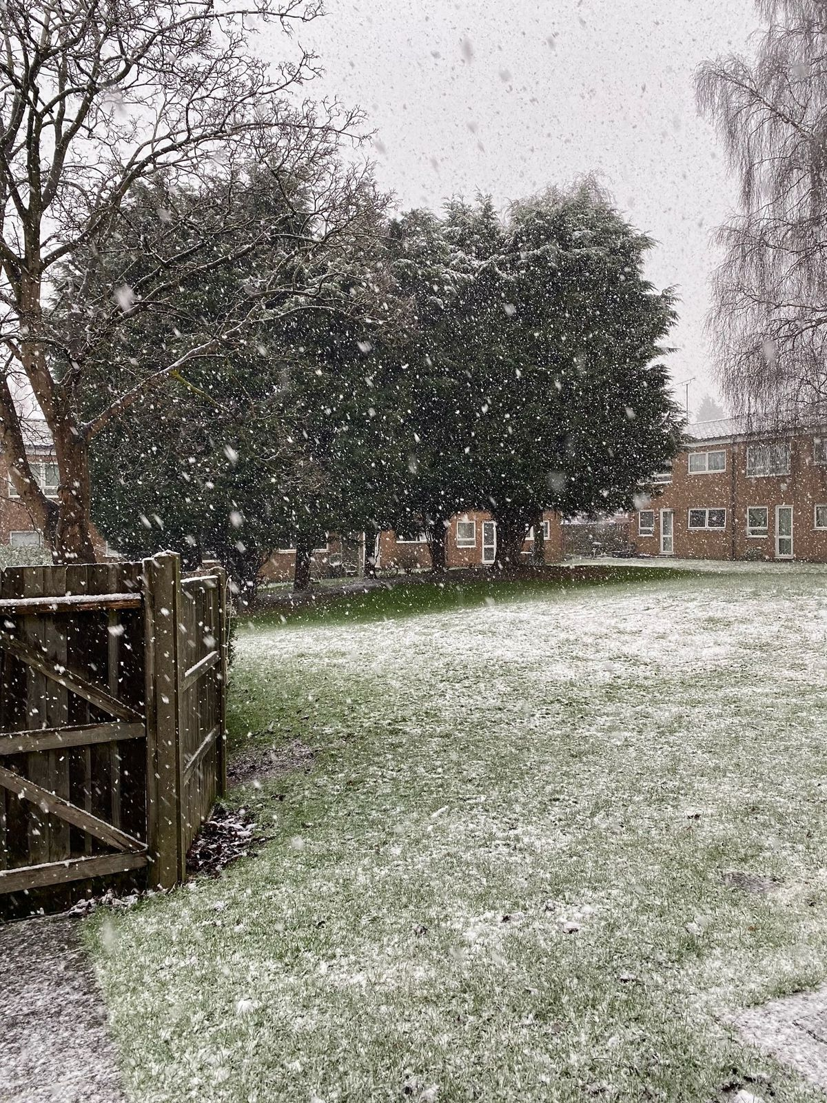 Snow in Trident Drive, Oldbury, by Susan Waldron