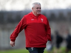 Wales tap into knowledge of Delme Thomas ahead of New Zealand showdown
