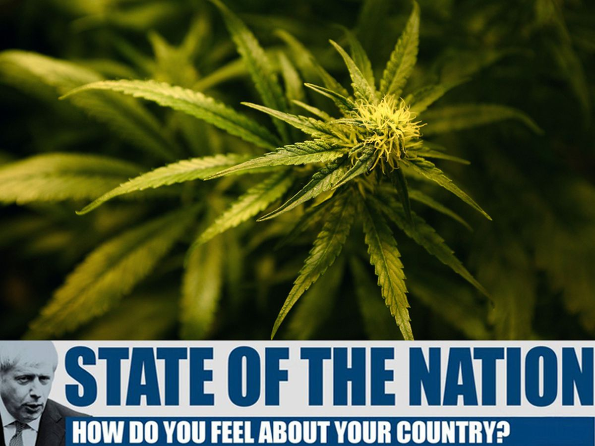 Cannabis is currently illegal in the UK, but should it be legalised?