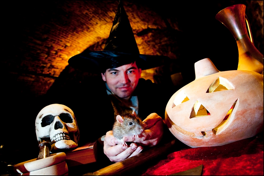 Dudley Zoo Gears Up For Halloween Express Amp Star