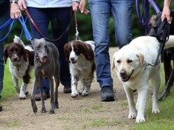 Dog walking centre backed to transform Aldridge field