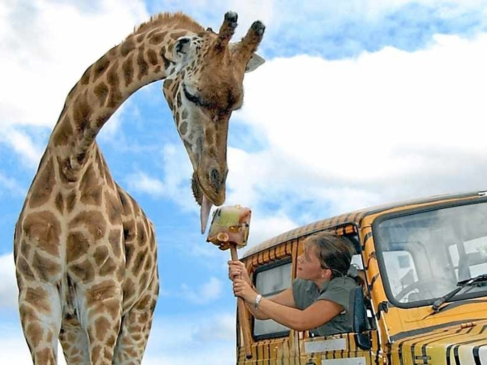 West Midland Safari Park is bought by French leisure group