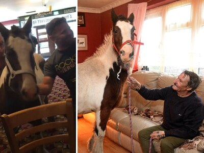 'We both wanted a drink': Meet the man who took his horse to Wetherspoons