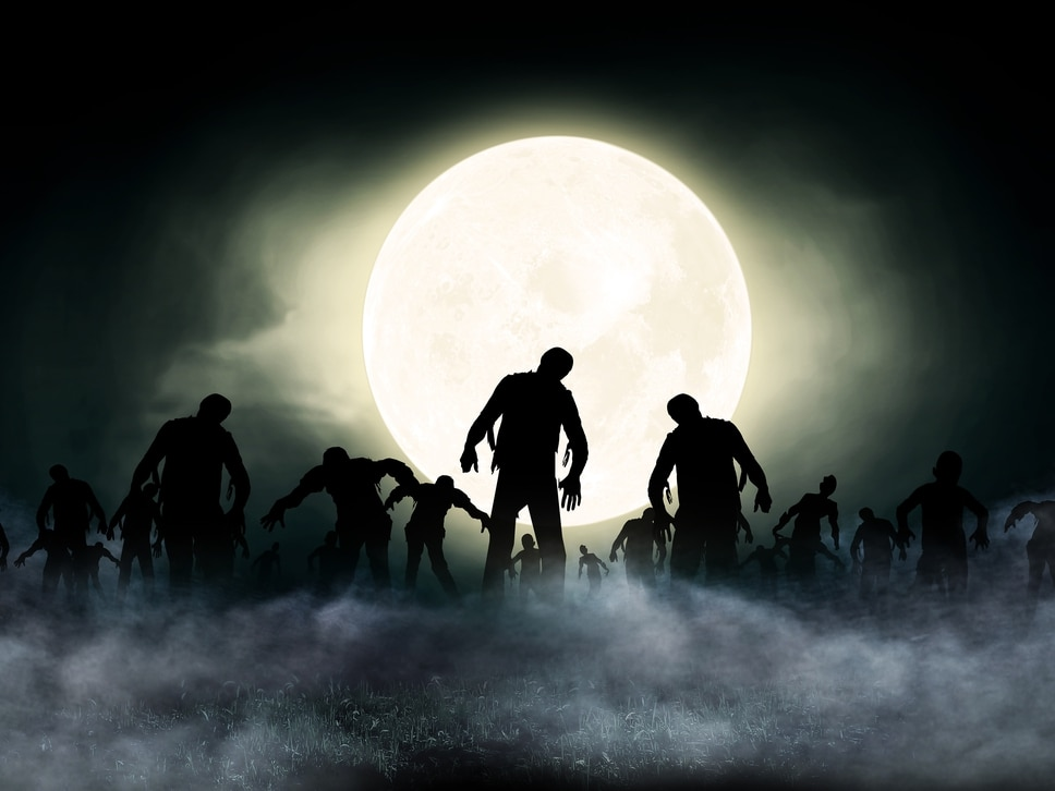 Happy Halloween! Test your knowledge of the spooky holiday - quiz