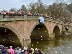 Bewdley goes quackers for annual New Year's Day Duck Race - with PICTURES and VIDEO