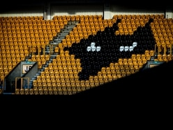 Wolves look to extend capacity at Molineux