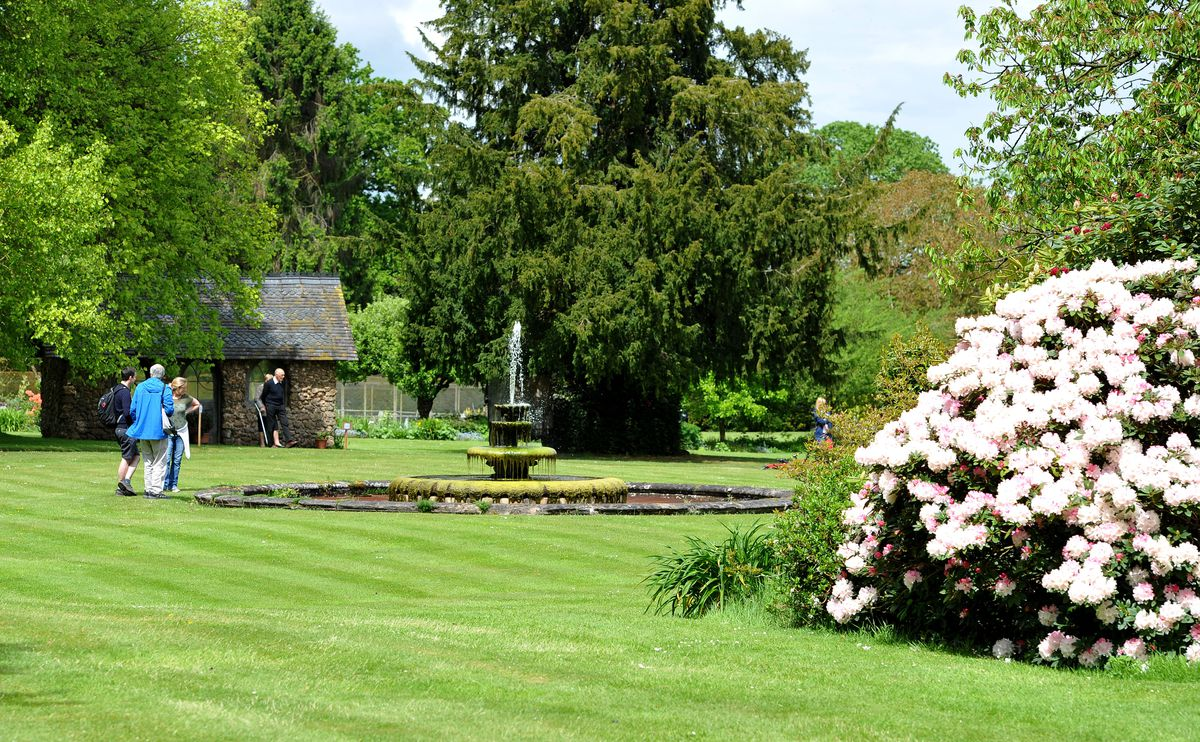 The gardens of Enville Hall