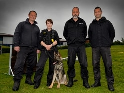 Biting back: Police dogs' role in the fight against crime