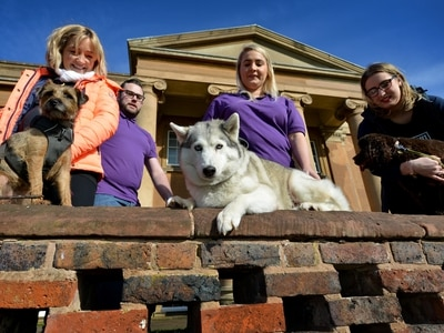 Tail-wagging fundraiser for Wolverhampton's Compton Hospice