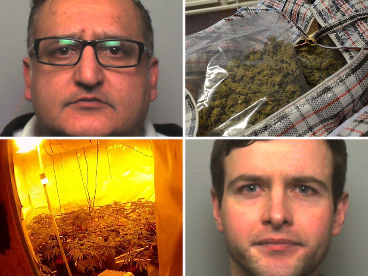 Tariq Khwaja, top left, and Venelin Mihaylov have been jailed for dealing cannabis
