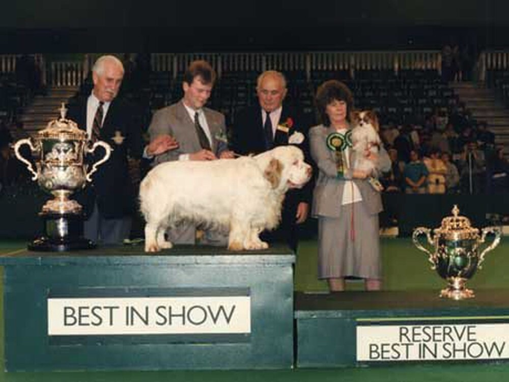 From puppy prizes to most popular breeds: We take a look at the Best in Show winners through the years at Crufts