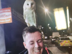 PC Oscar Finney with the owl in Brierley Hill