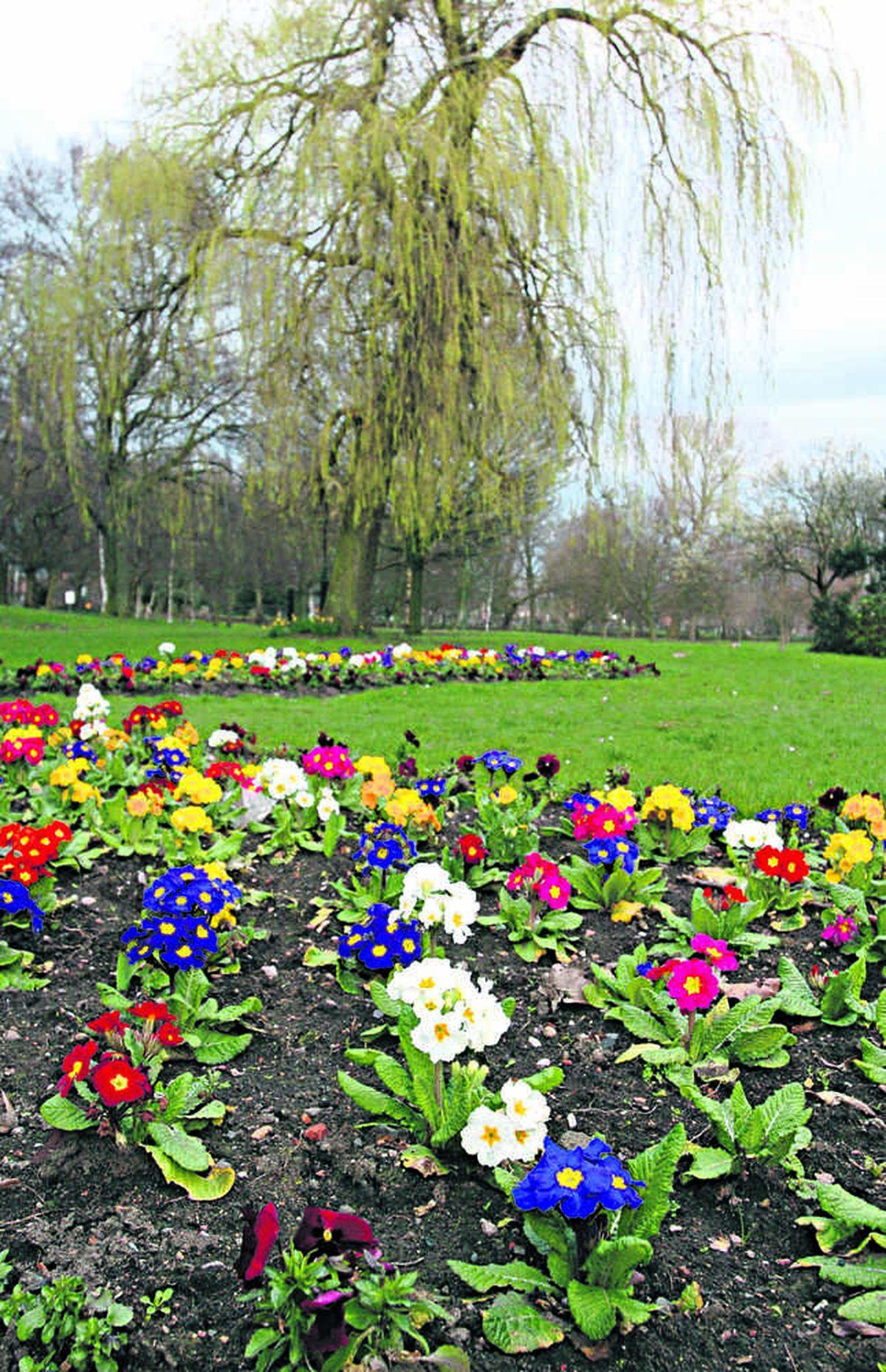 Brunswick Park will enjoy a birthday bash