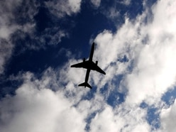 PM urged to reconsider Sharm flight ban