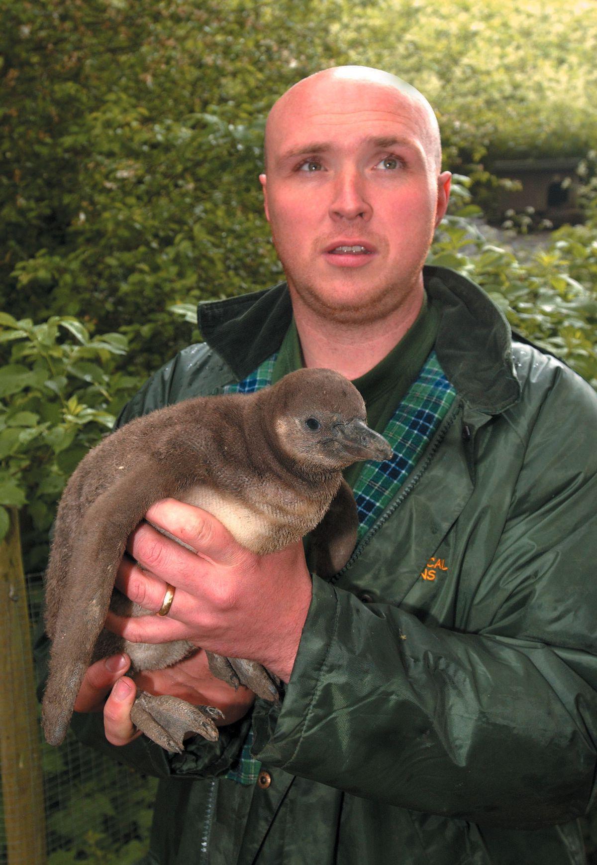 Dudley Zoo manager Matt Lewis