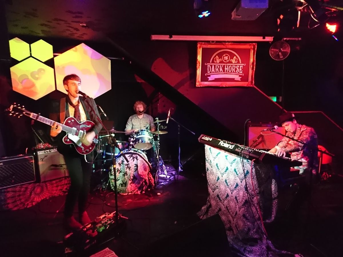 Live gigs have been few and far between for The Good Water in 2020. Picture: Peter Williams