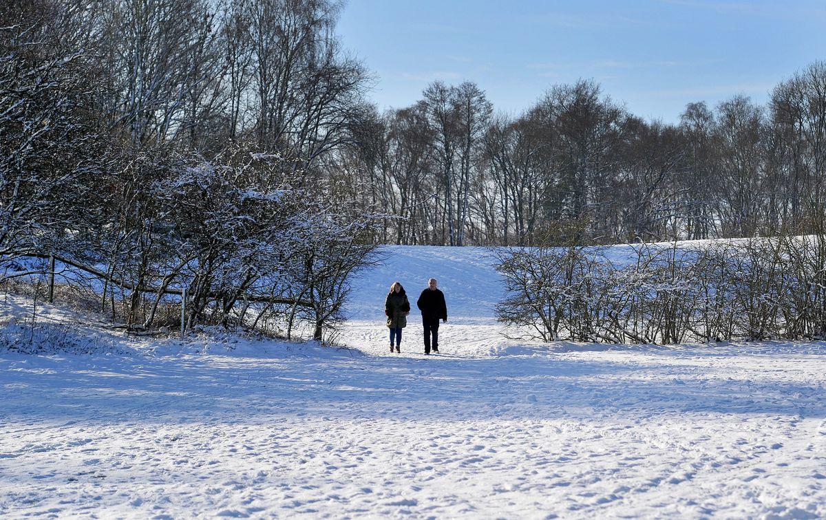 Snowy scenes around Baggeridge Country Park