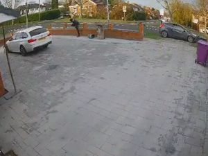 CCTV has emerged on social media of a Ford Fiesta used for suspicious activity