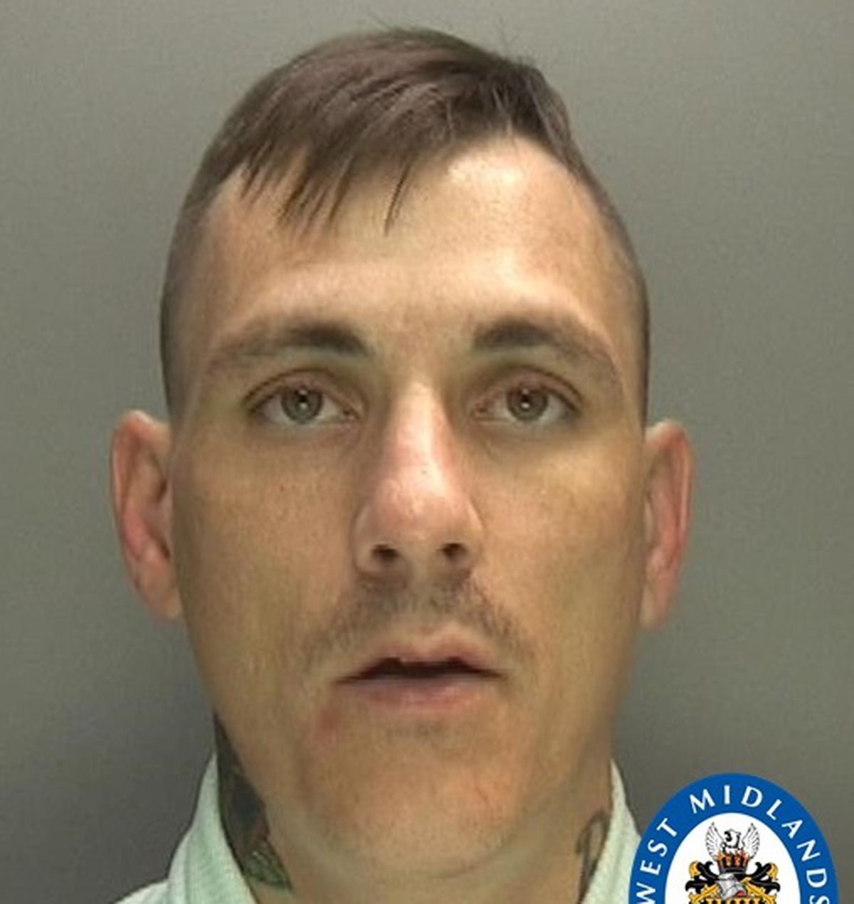 Luke Ireland was sentenced to two and a half years behind bars