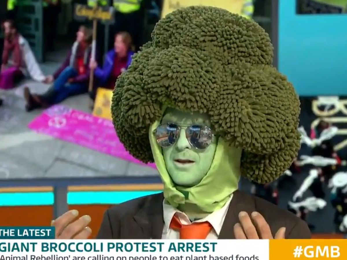 Man dressed as broccoli interviewed on Good Morning Britain