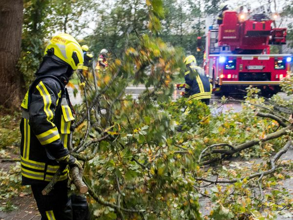 A firefighter removes fallen trees from a road in Hamburg, Germany