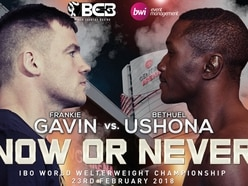 Frankie Gavin to face Bethuel Ushona for boxing world title in Birmingham