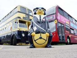 National Express West Midlands' famous Bussy Bear to be auctioned