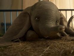 Disney remakes: An original film idea? When elephants fly...