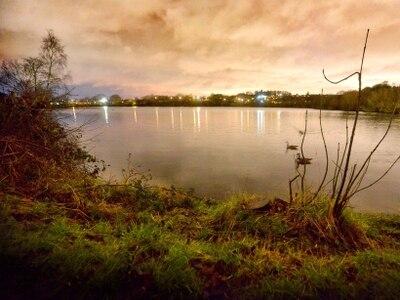 Dog found in bag in Netherton Reservoir